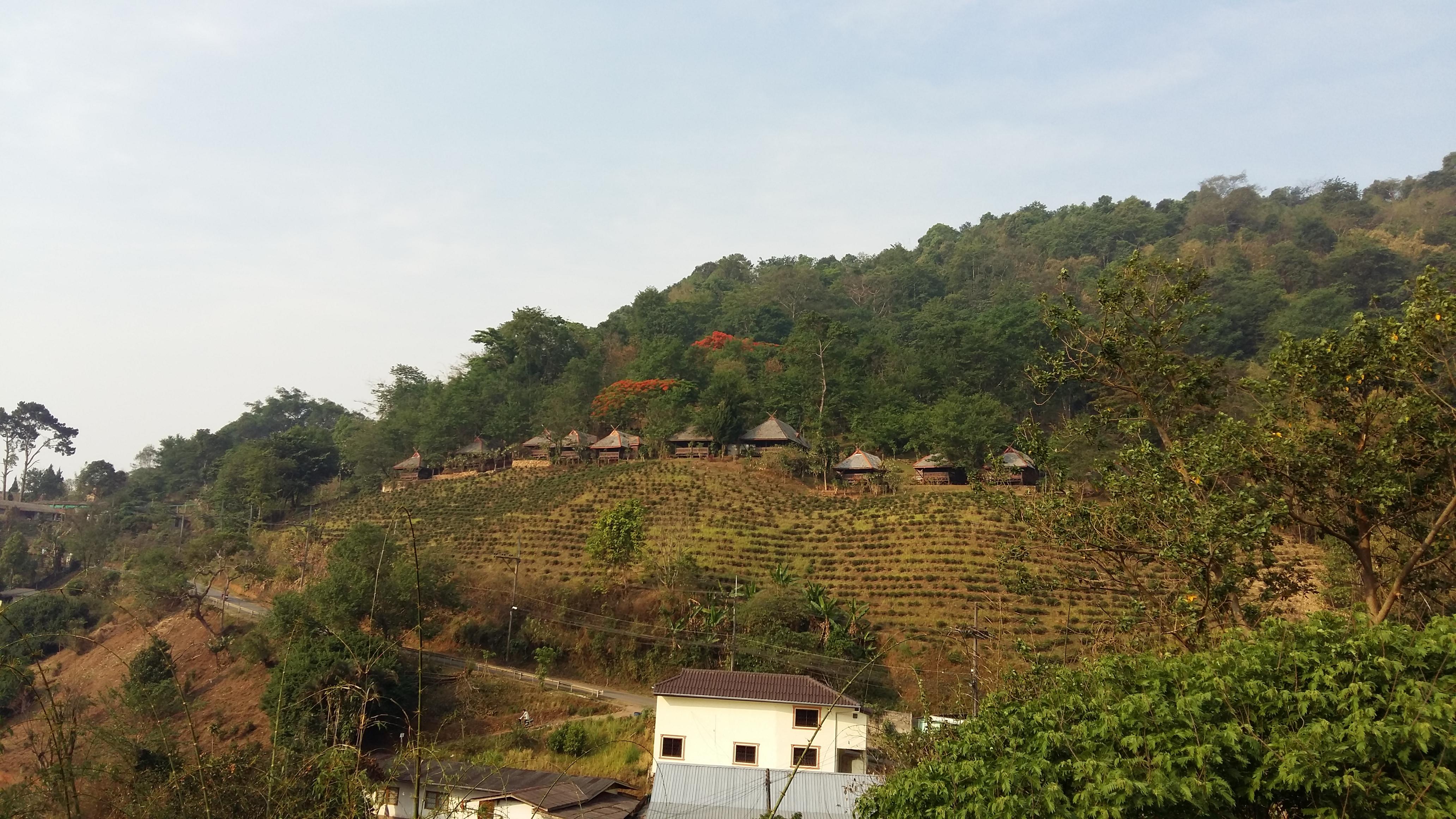 Santikhiri – dedina mieru a čajový raj
