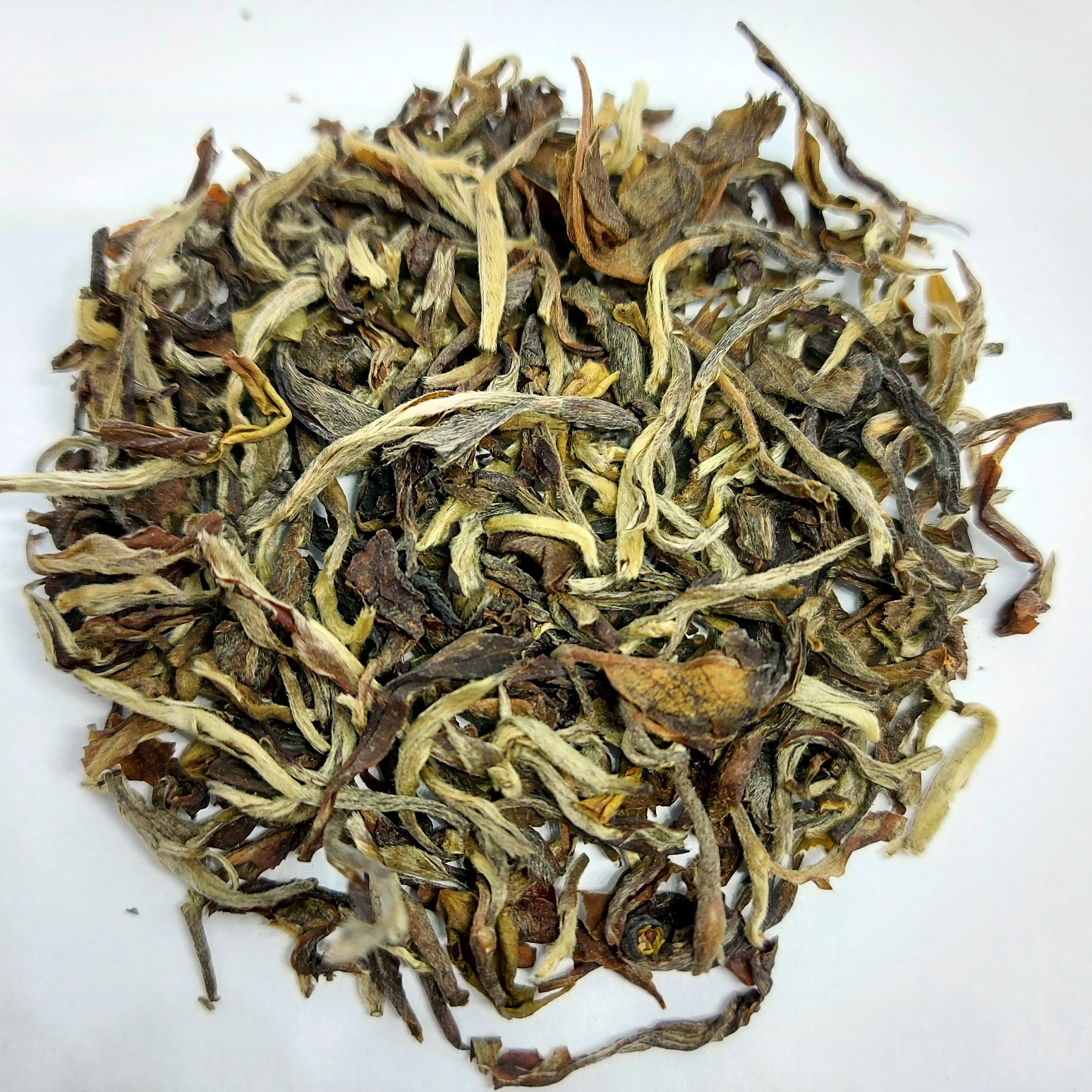 Darjeeling Autumnal Flush Margaret's Hope Moonlight 2020